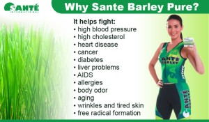 Sante-Barley-Pure-Cure-Benefits-700x410