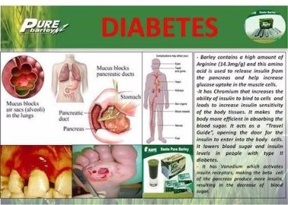 sante-pure-barley-for-diabetis.jpg