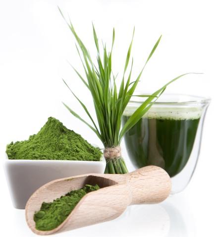 barley-grass-image-300x191.jpg